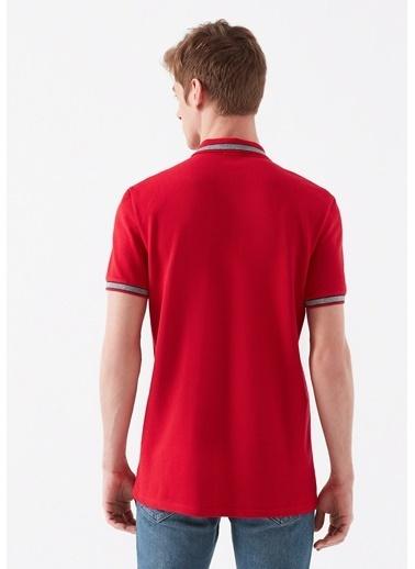 Mavi Kırmızı Polo Tişört Kırmızı